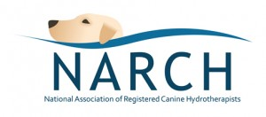 narch-logo-low-res
